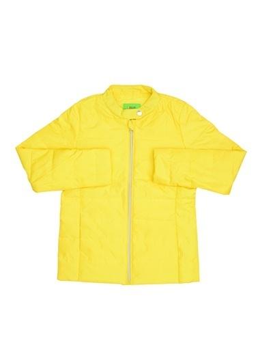 Limon Company Mont Sarı